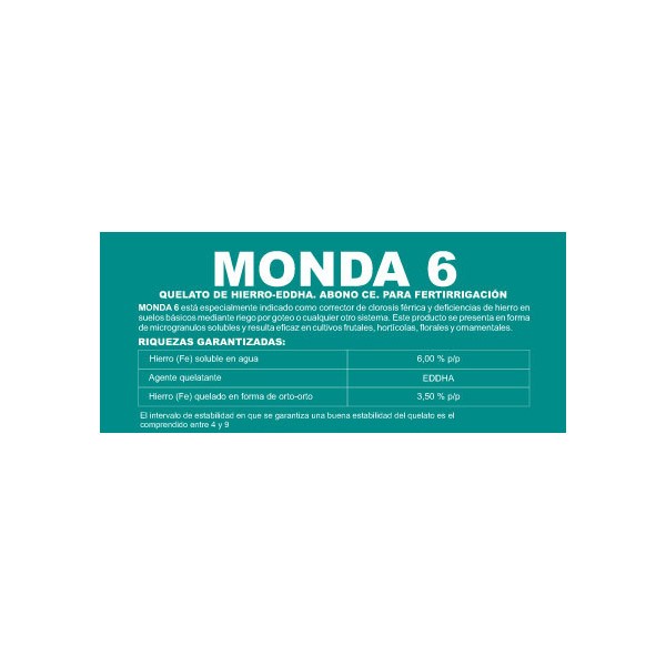 Monda 6