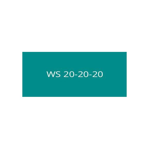 WS 20-20-20